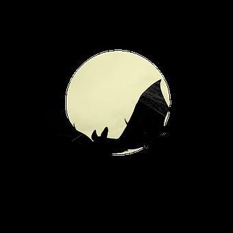 Bat, Moon, Silhouette, Spooky, Night, Halloween, Horror