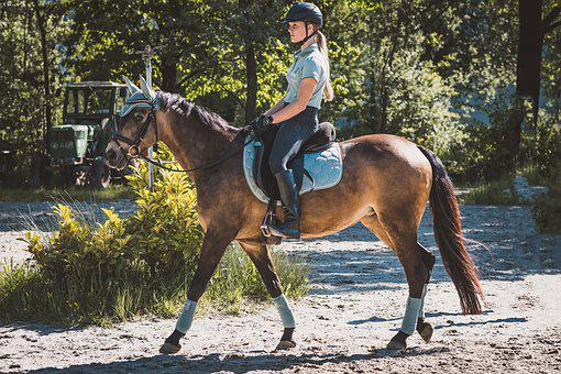 Horseback Riding, Horse, Woman, Pony, Riding Pony