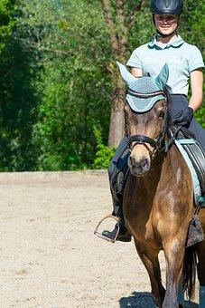 Horseback Riding, Horse, Woman, Pony, Saddle Horse
