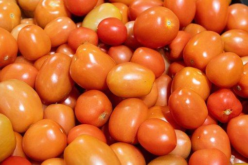 Tomatoes, Vegetable, Food, Produce, Harvest, Organic