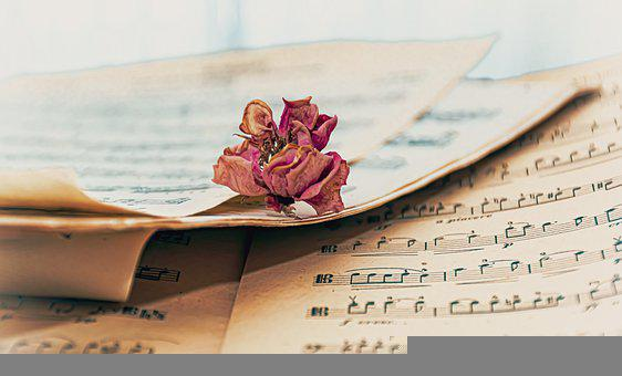 Music Sheet, Music, Dry Rose, Withered, Rose, Paper