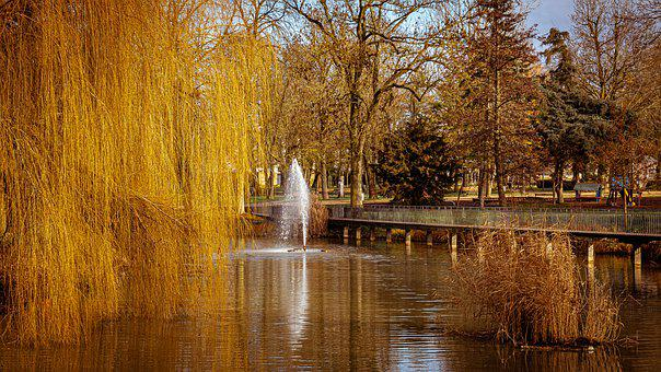 Park, Fountain, Trees, Fall, Autumn, Reflection, Water