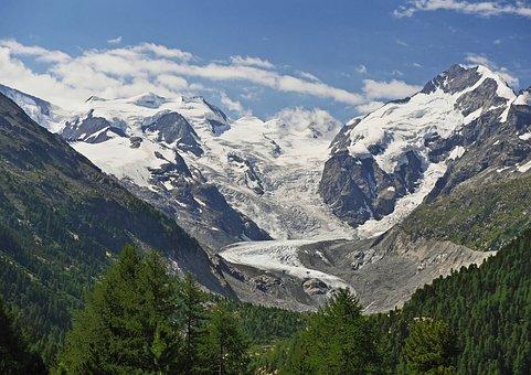Mountains, Glacier, Snow, Frozen, Trees, Forest