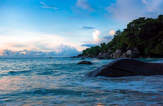 Beach, Sea, Shore, Seashore, Coast, Waves, Ocean Waves