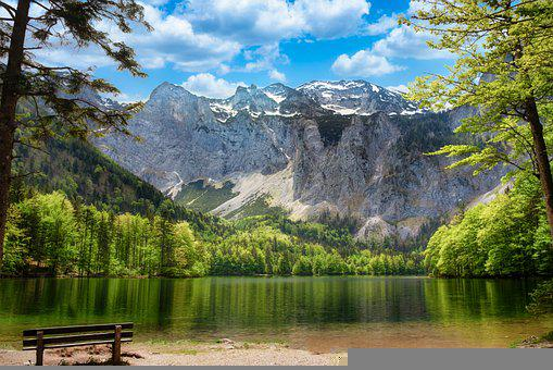 Mountains, Lake, Bench, Trees, Alps, Alpine, Forests