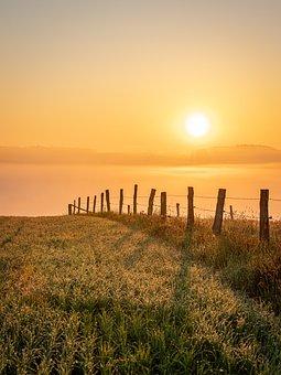 Sunset, Field, Fence, Demarcation, Grass, Grassland
