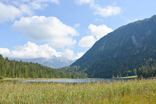 Field, Meadow, Lake, Alps, Mountains, Alpine, Clouds