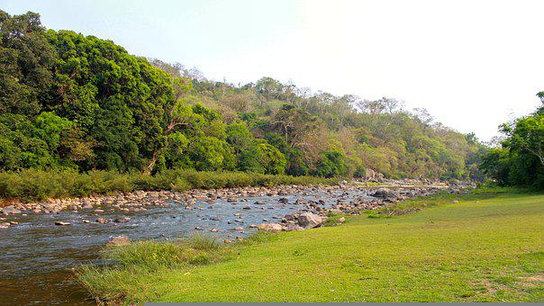 River, Forest, Reserve, Grassland, Trees, Mountains