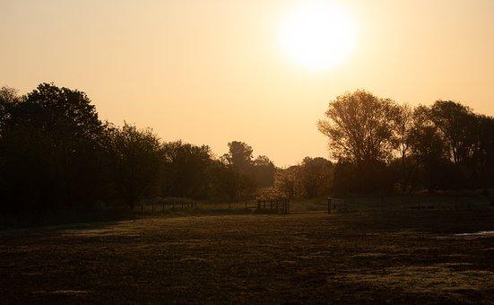 Riverbank, Fog, Sunrise, River, Silhouette, Sun