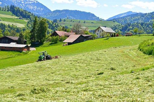 Hills, Cabin, Farm, Grassland, Trees, Forest, Entlebuch
