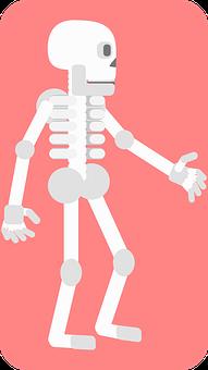 Skeleton, Bones, Death, Skull, Body, Dead, Cut Out