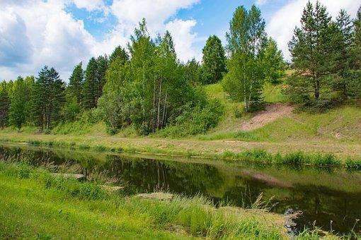 River, Trees, Forest, Grass, Grasslands, Riverbanks