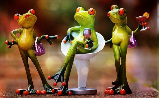 Party, Celebrate, Drink, Funny, Frogs, Chick, Cute