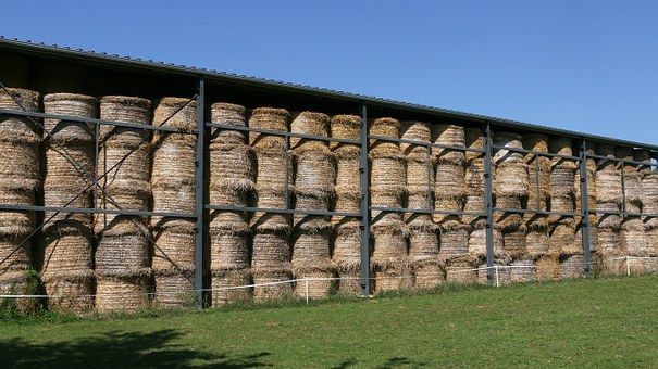 Hay Bales, Stock, Hay, Forage, Field, Rural, Fields