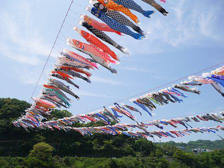 Carp Streamer, May, Boys' Festival