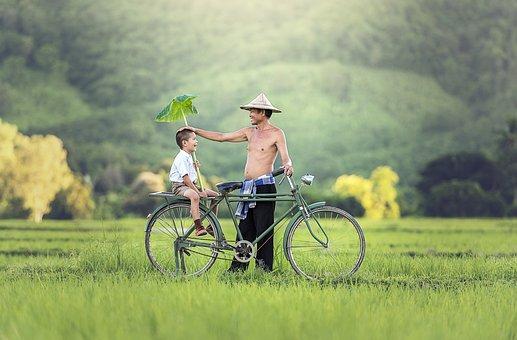 Bicycle, Relationship, Parrent, Cambodia, Myanmar