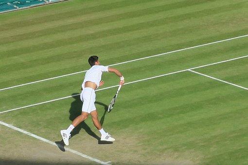 Novak Jokovic, Mens Tennis, Wimbledon, Lawn, Serve