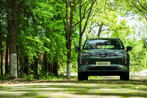 Car, Road, Travel, Trees, Woods, Path, Auto, Automobile