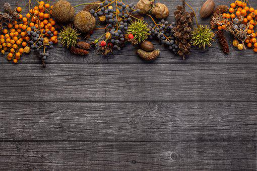 Fruits, Nuts, Border, Food, Berries, Seeds, Autumn