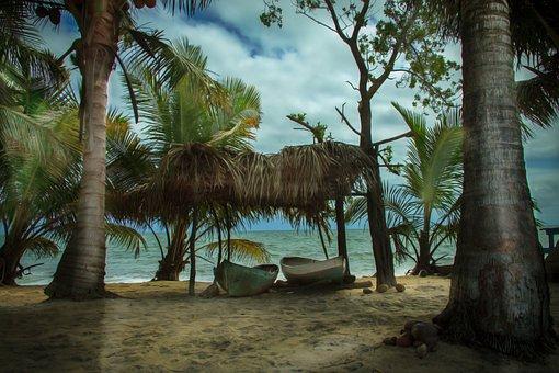 Beach, Sea, Palm Trees, Boats, Ocean, Sand, Coast