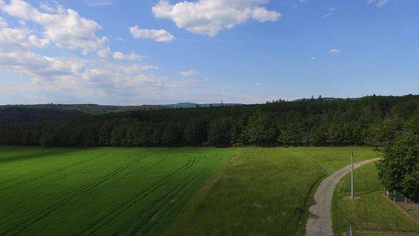 Field, Road, Rural, Farm, Trees, Countryside, Landscape