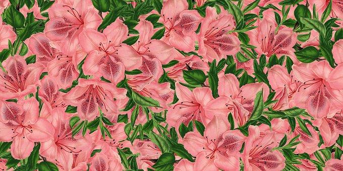 Background, Flowery, Floral Texture, Scrapbook