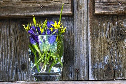 Alpine Hut, Flowers, Still Life, Mountain Hut, Alm, Alp