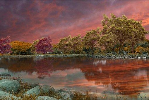 Lake, Trees, Sunset, Rocks, Bank, Reflection, Water
