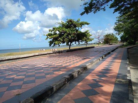 Coast, Pavement, Beach, Resort, Sea, Ocean, Trees
