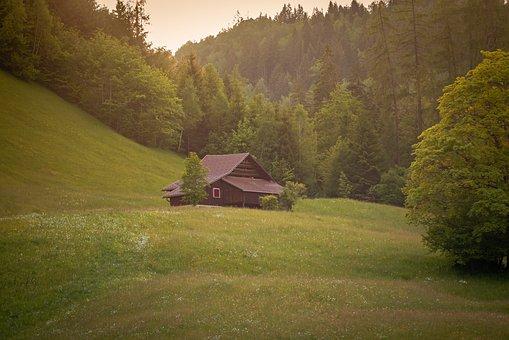 Landscape, Meadow, Forest, Hut, Log Cabin, House