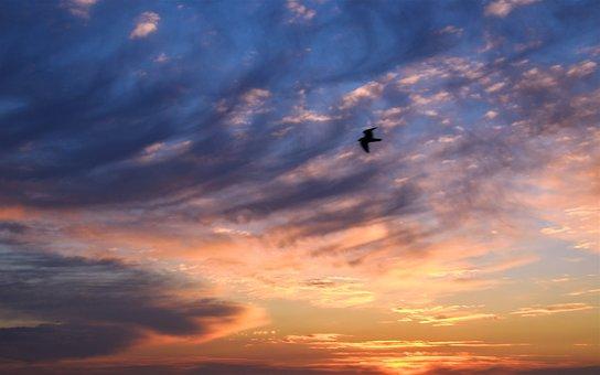 Summer, Sun, Sea, Heat, Sunset, Sky, Beach, Twilight