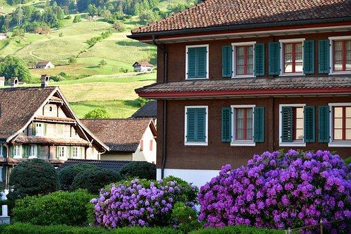 Village, Houses, Lauerz, Buildings, Flowers, Plants