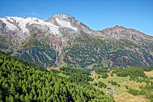 Rotten Mountain, Alps, Forests, Conifers, Coniferous
