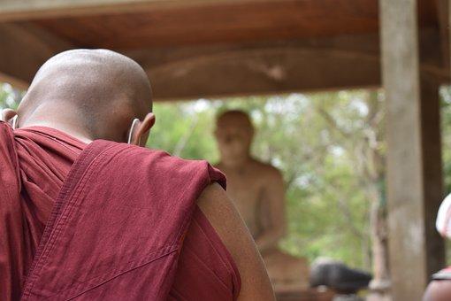 Monk, Buddha, Buddhism, Buddhist, Asia, Sri Lanka
