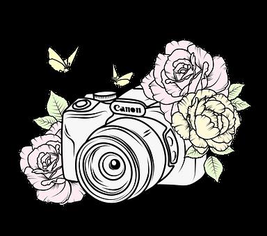 Camera, Lens, Flowers, Petals, Photographer, Equipment