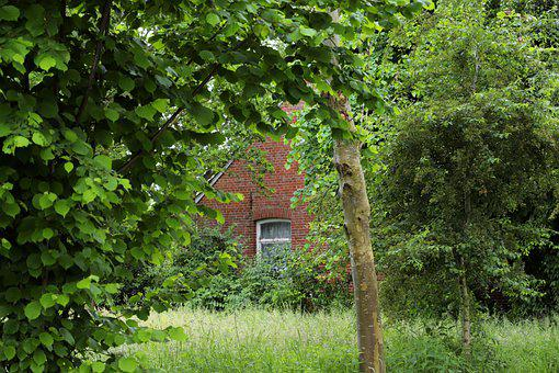 House, Old House, Wall, Meadow, Building, Structure