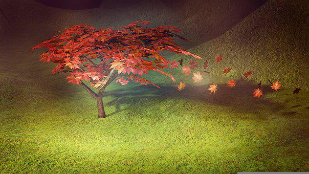 Maple, Tree, Autumn, Shrub, Bonsai, 3d, Japanese Maple