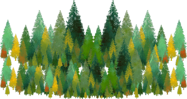 Trees, Pines, Evergreen, Cut Out, Landscape, Forest