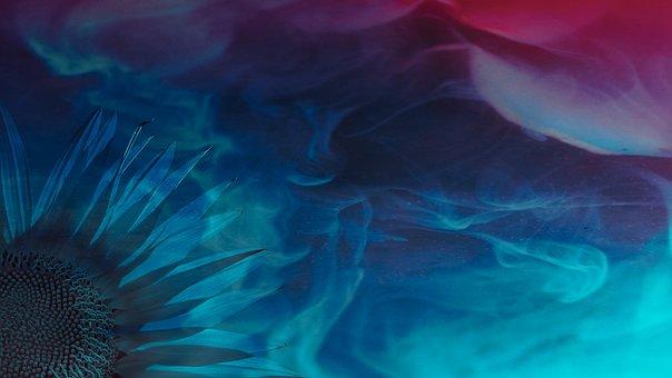 Wallpaper, Flower, Blue, Abstract, Sunflower, Waves