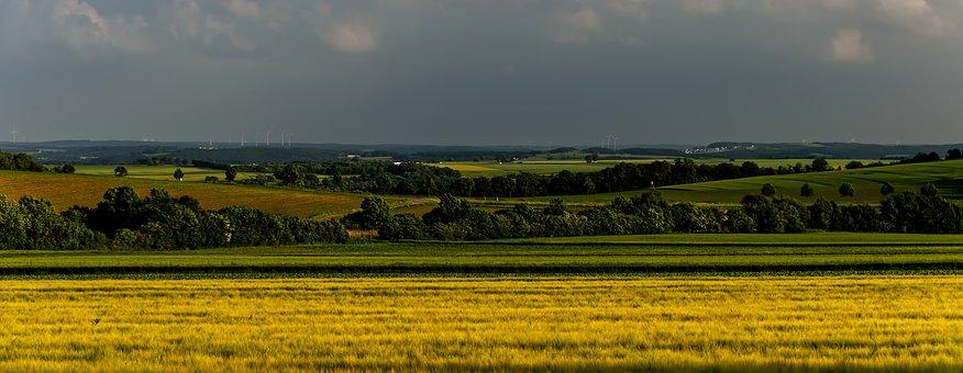 Landscape, Rapeseed Field, Panorama, Fields, Meadows