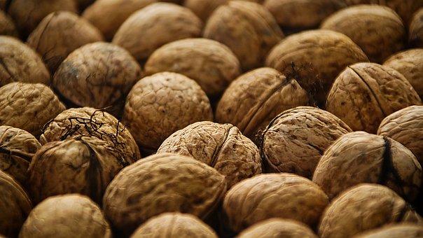 Walnut, Nuts, Food, Produce, Harvest, Organic, Brown