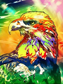 Eagle, Bird, Raptor, Animal, Wildlife, Portrait