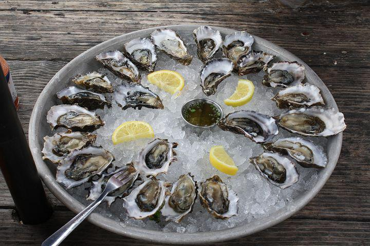 Oysters, Half Shell, Ice, Seafood, Mollusk, Expensive