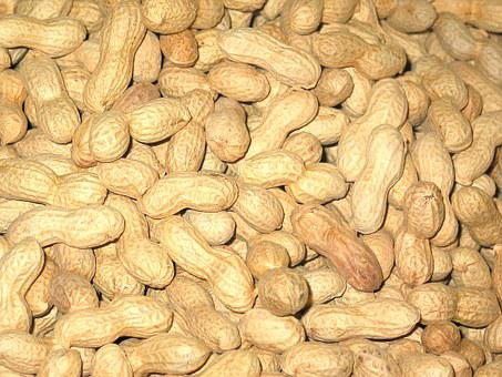 Peanuts, Christmas, Nuts, Background, Advent