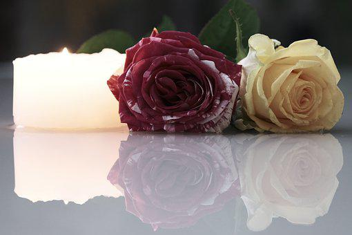 Roses, Flowers, Reflection, Candle, Pair, Petals