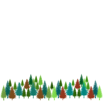 Pines, Trees, Forest, Stationary, Evergreens, Colorful