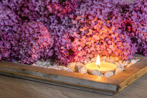 Flowers, Candle, Flames, Lilac, Garden, Spring, Bush