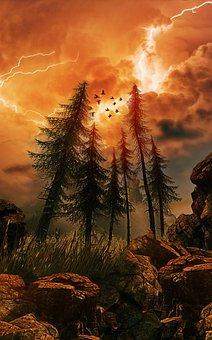 Forest, Trees, Storm, Lightning, Rocks, Landscape