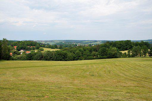 Field, Town, Landscape, Panorama, Trees, Meadow