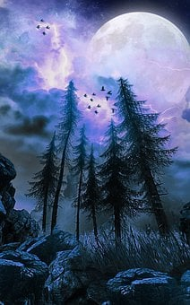 Trees, Moon, Night, Fantasy, Forest, Landscape, Storm